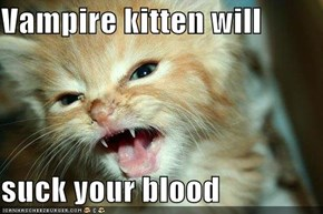 Vampire kitten will  suck your blood