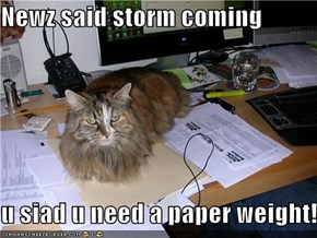 Newz said storm coming  u siad u need a paper weight!