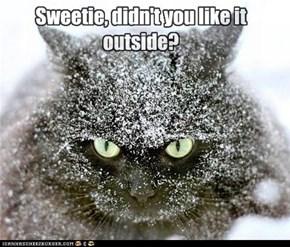 Sweetie, didn't you like it outside?