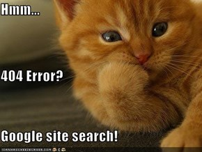Hmm... 404 Error? Google site search!