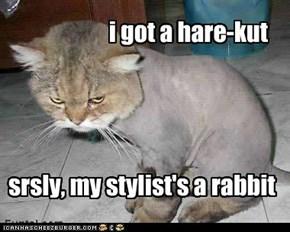 i got a hare-kut