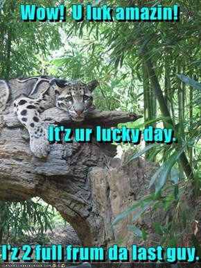 Wow!  U luk amazin!          It'z ur lucky day.    I'z 2 full frum da last guy.