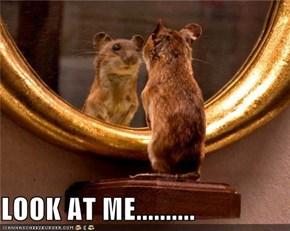 LOOK AT ME..........