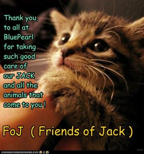Thank you,to all atBluePearlfor taking such good care of  our JACKand all the animals thatcome to you !