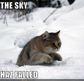 THE SKY  HAZ FALLED