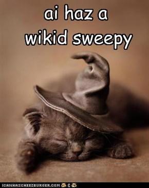 ai haz a wikid sweepy
