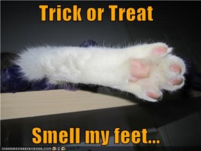 Trick or Treat  Smell my feet...