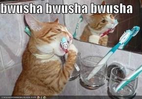 bwusha bwusha bwusha
