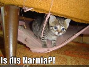 Is dis Narnia?!