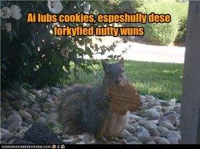 Ai lubs cookies, espeshully dese forkyfied nutty wuns