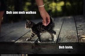 Deh See Meh Walken...