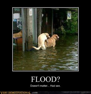 FLOOD?