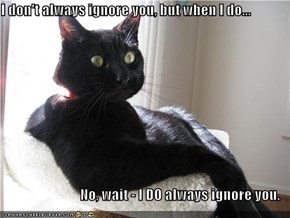 I don't always ignore you, but when I do...  No, wait - I DO always ignore you.