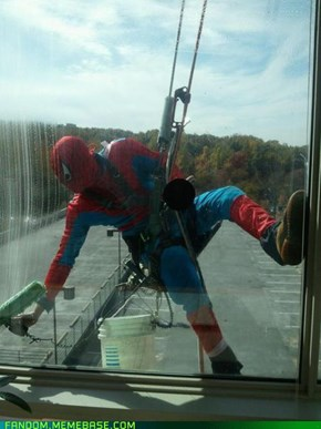 Not Even Being Spidey Is Recession-Proof