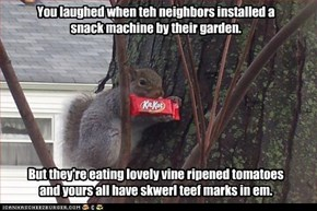 You laughed when teh neighbors installed a snack machine by their garden. But they're eating lovely vine ripened tomatoes while yours all have skwerl teef marks in em. Jus sayin'