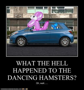 WHAT THE HELL HAPPENED TO THE DANCING HAMSTERS?