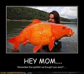 HEY MOM....