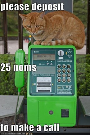 please deposit 25 noms  to make a call