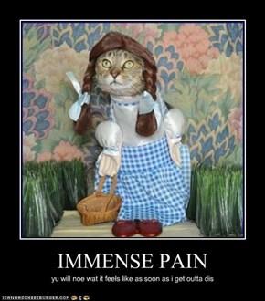 IMMENSE PAIN