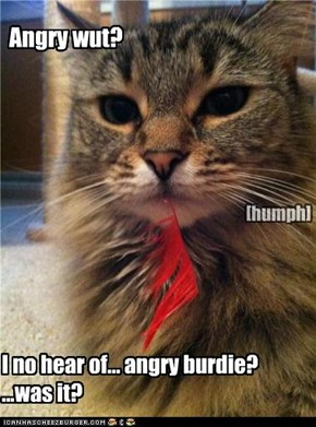 Angry wut?