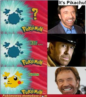 Don't Question Chuck Norris