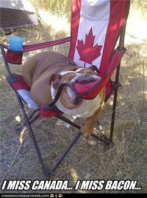 I MISS CANADA... I MISS BACON...
