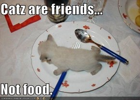 Catz are friends...  Not food.