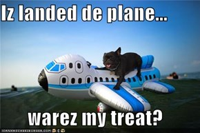 Iz landed de plane...  warez my treat?