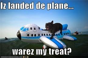 Iz landed de plane...  warez my treat?