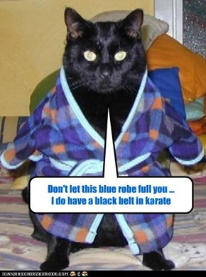 Don't let this blue robe full you ... I do have a black belt in karate