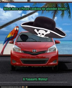 What does a Pirate Looking for plunder drive?