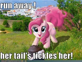 run away !  her tail's tickles her!