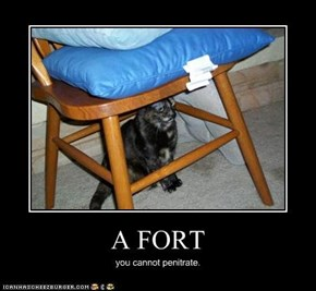 A FORT