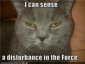 I can sense  a disturbance in the Force.