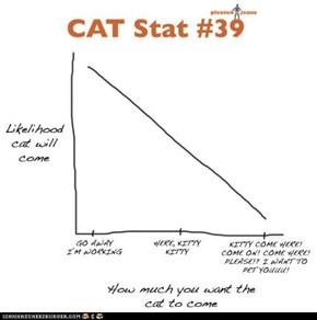 CAT Stat #39