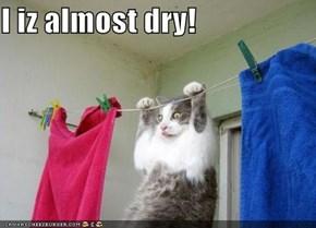 I iz almost dry!
