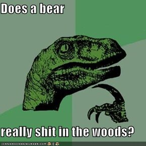 Does a bear  really shit in the woods?