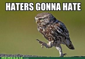 Owling?