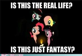 Ponies Queen