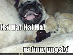 Ha! Ha! Ha! Ha! uz funy pugsly!