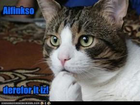 filosofikal kitteh filosofikizez