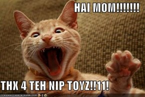 HAI M0M!!!!!!!  THX 4 TEH NIP TOYZ!!11!