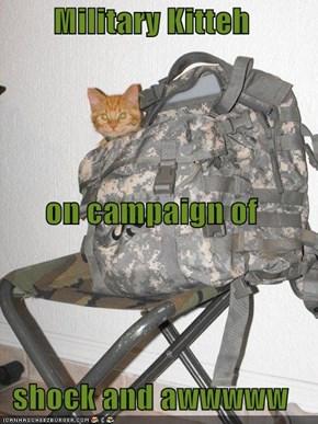 Military Kitteh