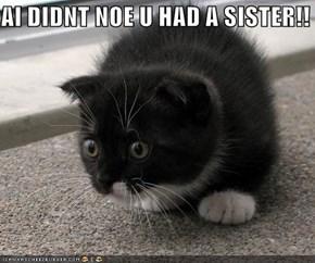 AI DIDNT NOE U HAD A SISTER!!