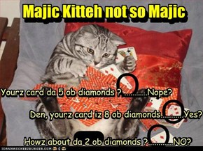 Majic Kitteh ... not so majic, but he keeps trying