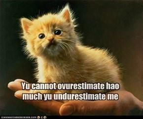 Yu cannot ovurestimate hao much yu undurestimate me