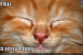 I haz  a verry happy