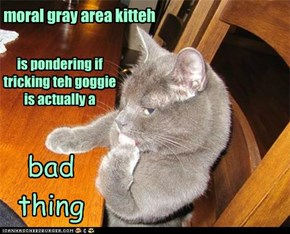 moral gray area kitteh is pondering if tricking teh goggie is actually a bad thing