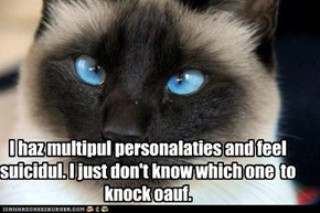 I haz multipul personalaties and feel suicidul. I just don't know which one  to knock oauf.