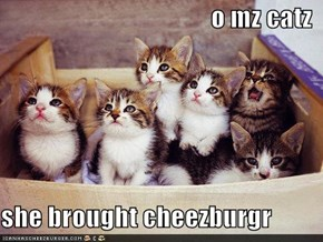 o mz catz  she brought cheezburgr